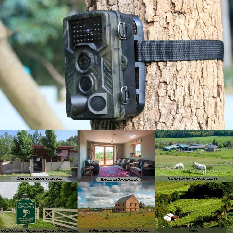 fotolovushka ohotnichja kamera suntek hc 800a 08 - Фотоловушка, охотничья камера Suntek HC-800A - 1080р, 8 Мп CMOS, IP56, определение движения, ночная съемка