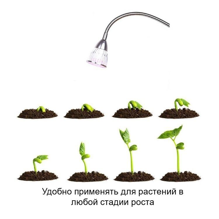 svetodiodnaja fitolampa dlja rastenij 2 v 1 10 vt 10 svetodiodov 09 - Светодиодная фитолампа для растений 2 в 1 (10 Вт, 10 светодиодов)
