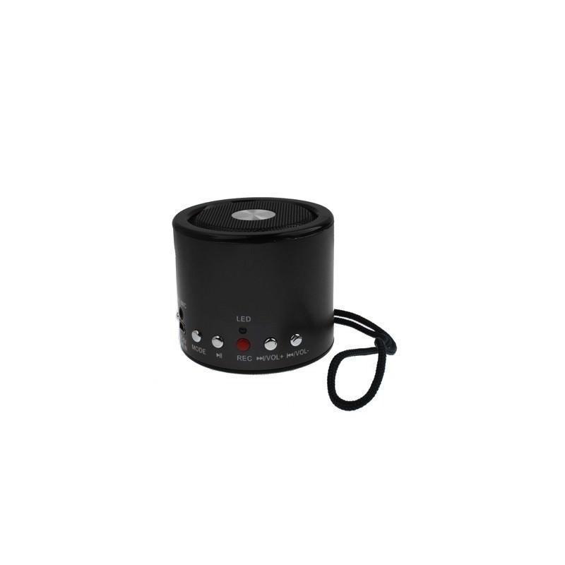 Автосказочник Fabler – портативная колонка с функцией записи, радио, поддержкой флеш-памяти и карт Micro SD 185773