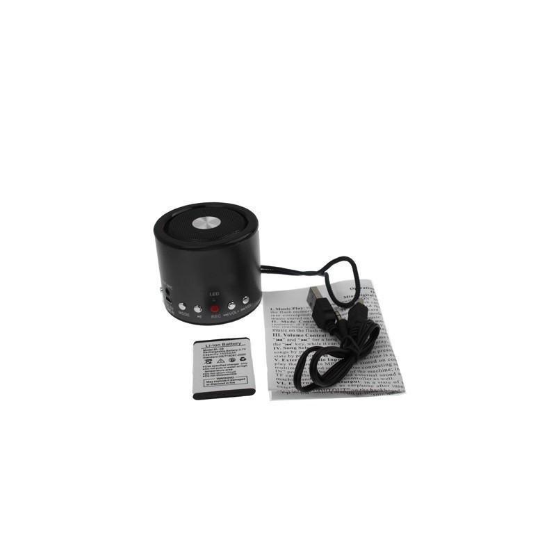 Автосказочник Fabler – портативная колонка с функцией записи, радио, поддержкой флеш-памяти и карт Micro SD 185775
