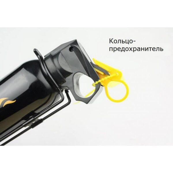 30211 - Порошковый автомобильный огнетушитель Flamebeater