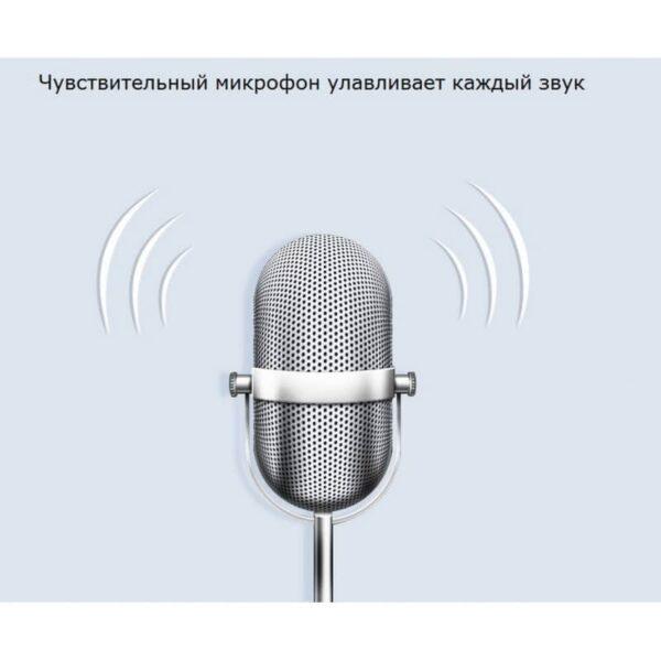 34412 - Диктофон Ring H-R600 - интеллектуальное шумоподавление, 8 Гб и 16 Гб, lossless звук