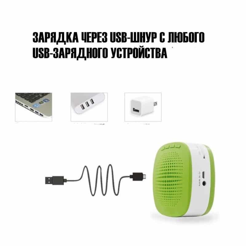 Портативный усилитель-громкоговоритель с микрофоном и колонкой S1015 (Micro SD, AUX IN, FM, диктофон) 214744