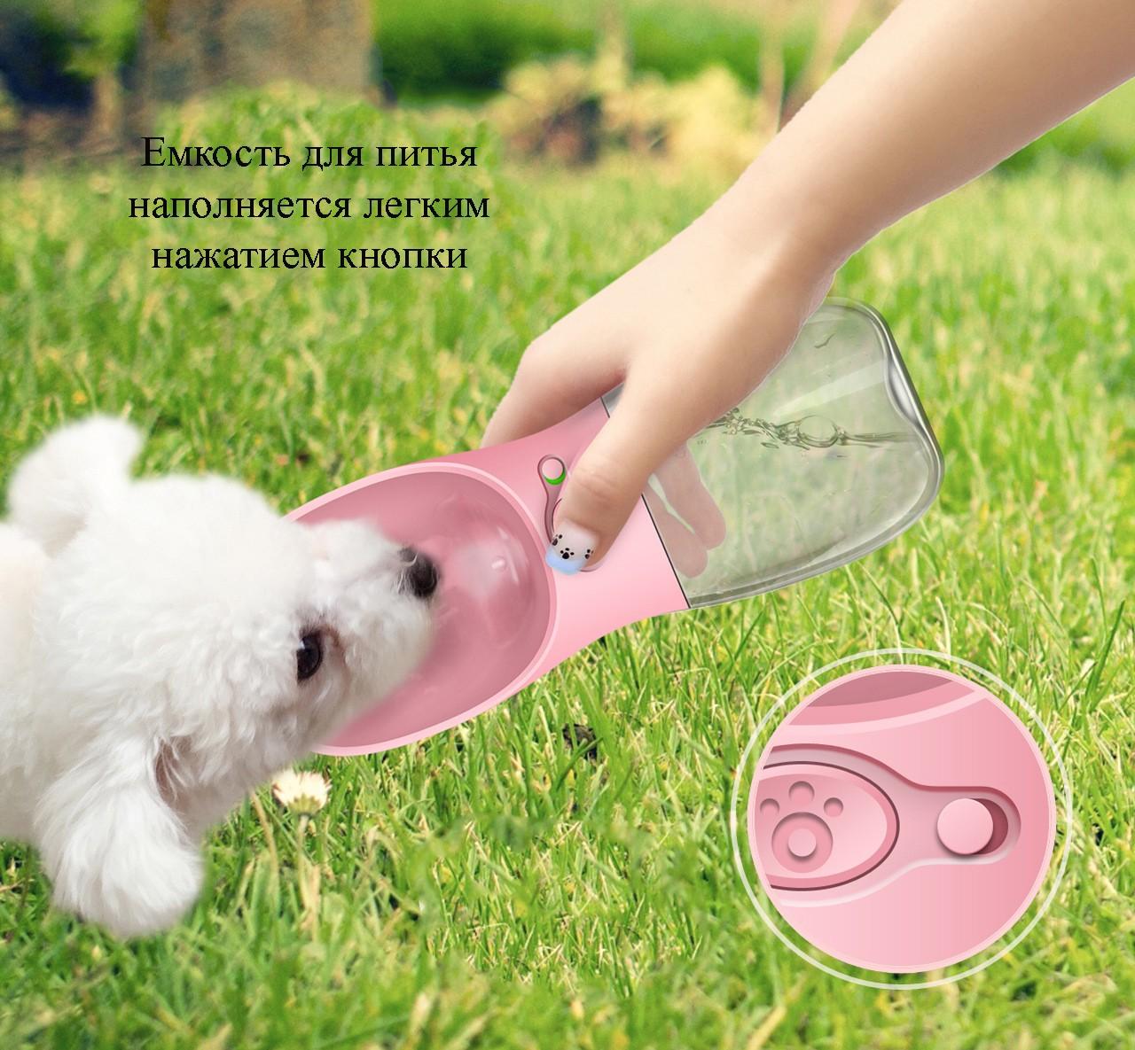 4f167af850b4 40732 - Комплект: Прозрачная сумка-переноска Pet Travel для собак, кошек и  портативная