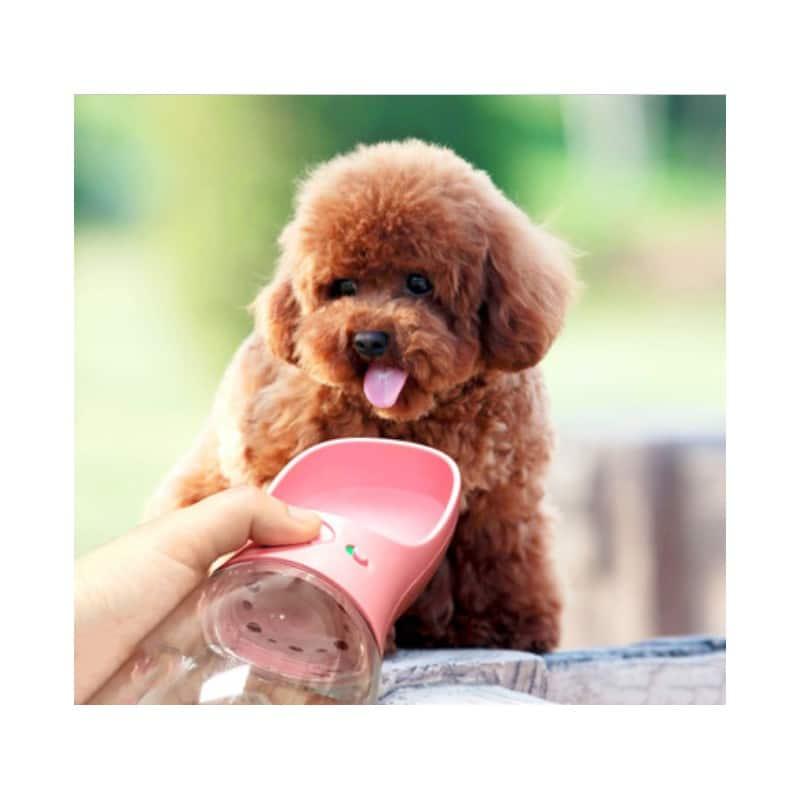Комплект: Прозрачная сумка-переноска Pet Travel для собак, кошек и портативная дорожная поилка-кормушка Doggy Travel 216194