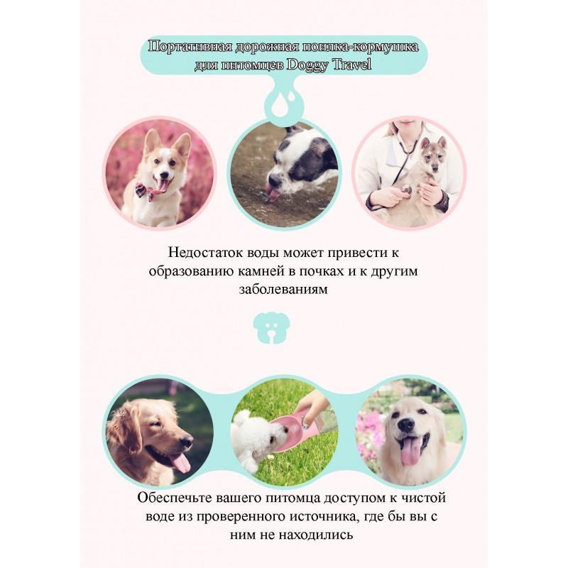 Комплект: Прозрачная сумка-переноска Pet Travel для собак, кошек и портативная дорожная поилка-кормушка Doggy Travel 216196