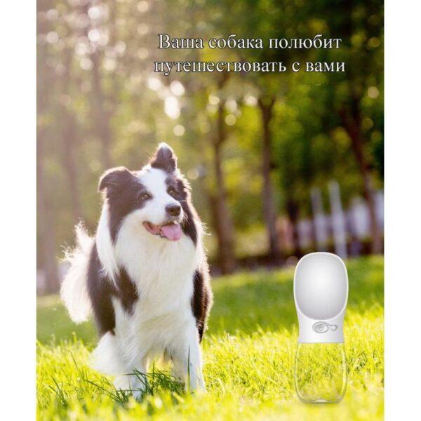 40820 - Комплект: Прозрачная сумка-переноска Pet Travel для собак, кошек и портативная дорожная поилка-кормушка Doggy Travel